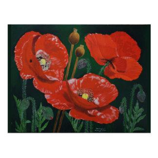 Rote Mohnblumen Postkarte