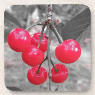 Rote Montmorency-Kirschen auf Baum im Kirschgarten Untersetzer