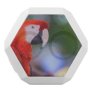 Rote Papageien-Fotografie Weiße Bluetooth Lautsprecher