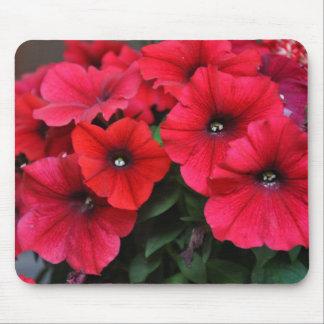 Rote Petunie-Blumen Mauspads
