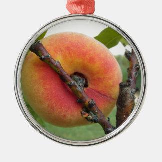 Rote Pfirsiche, die am Baum hängen. Toskana, Silbernes Ornament