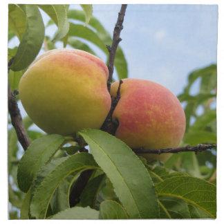 Rote Pfirsiche, die am Baum hängen. Toskana, Stoffserviette