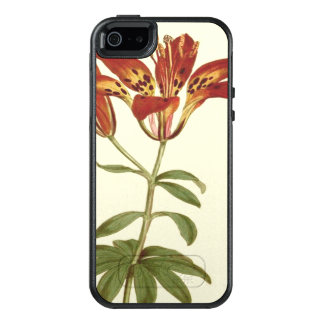 Rote Philadelphian Lilien-Illustration OtterBox iPhone 5/5s/SE Hülle