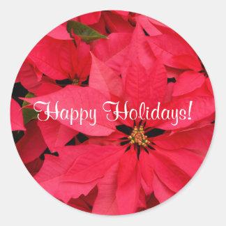 Rote Poinsettia-kleine frohe Feiertage Aufkleber