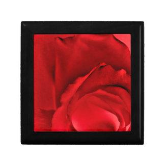 Rote Rose abstrakt Erinnerungskiste