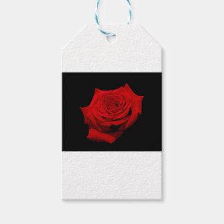 Rote Rose auf schwarzem Hintergrund Geschenkanhänger