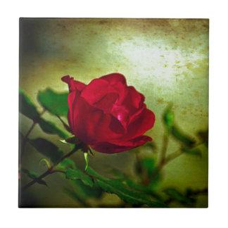 Rote Rose der Tag mystischer Gartengotische Keramikfliese