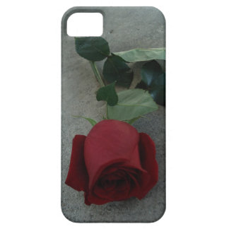 Rote Rose iphone Fall iPhone 5 Cover