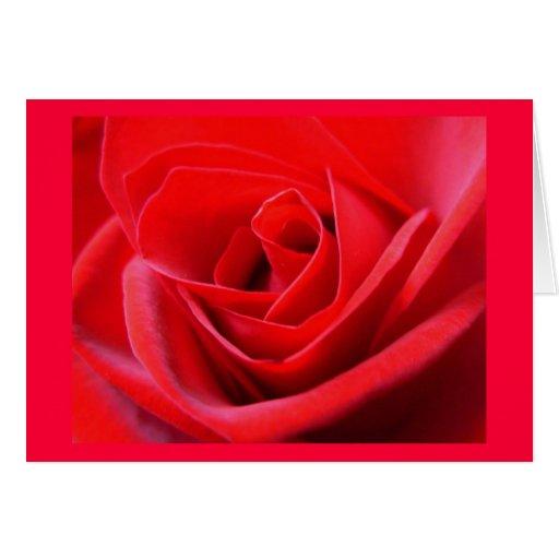 Rote Rose kardiert Blumen-kundenspezifische Gruß-K Grußkarte