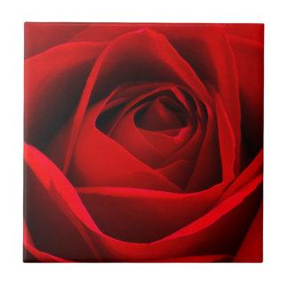 Rote Rose Keramikfliese