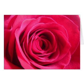 Rote Rose * Liebe Karte