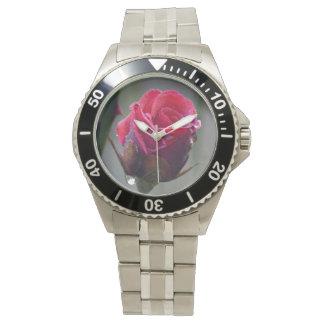 Rote Rose mit Wassertropf,Nahaufnahme im Garten Uhr