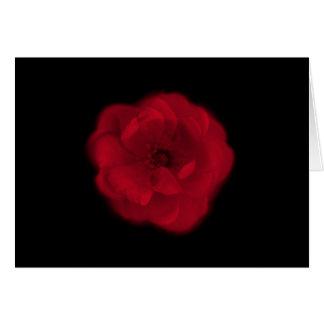 Rote Rose. Schwarzer Hintergrund Karte