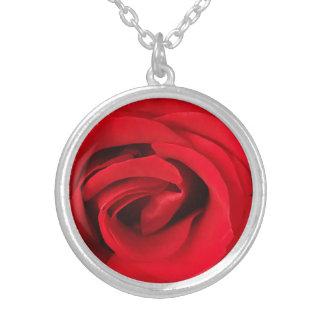 Rote Rose Versilberte Kette
