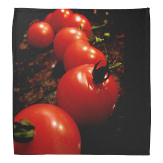 Rote Tomate Halstuch
