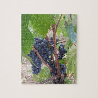 Rote Trauben auf der Rebe mit grünem Blätter Puzzle