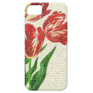 Rote Tulpe-Kalligraphie iPhone 5 Schutzhülle