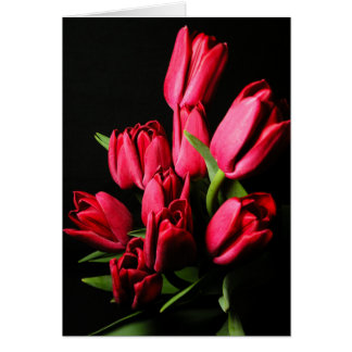 Rote Tulpe-leere Karte