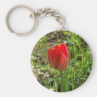 Rote Tulpe Schlüsselanhänger