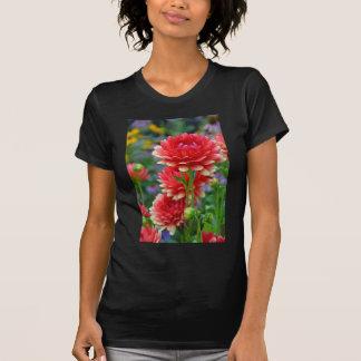 Rote und gelbe Dahlie-Blumen T-Shirt