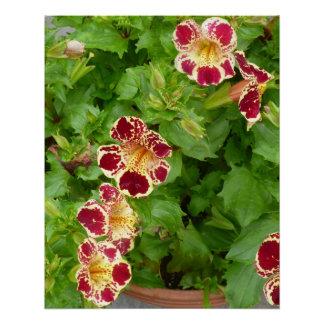 Rote und gelbe Tiger-Lilien-Blumen Poster