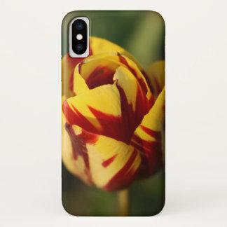 Rote und gelbe Tulpe-Blume iPhone X Hülle