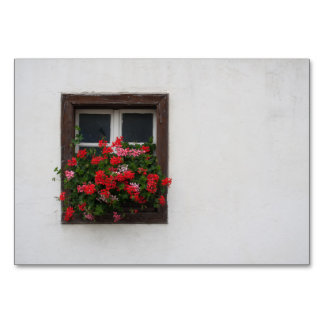 Rote und rosa Pelargonie Karte