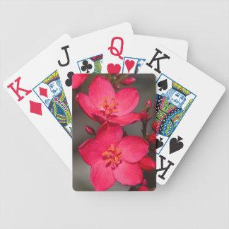 Rote und rosa tropische Fidschi-Blumen Bicycle Spielkarten