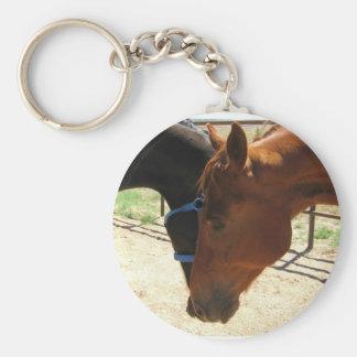Rote und schwarze Pferdefreunde teilen ein Schlüsselanhänger