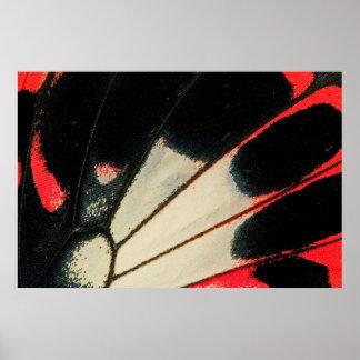 Rote und schwarze Schmetterlingsnahaufnahme Poster