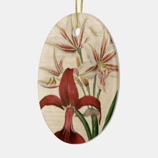 Rote und weiße Amaryllis-Blume Keramik Ornament