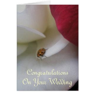 Rote und weiße Wedding Marienkäfer-Blumenblätter Karte