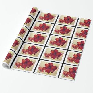 Rote Weihnachtsamaryllis deckte Packpapier mit