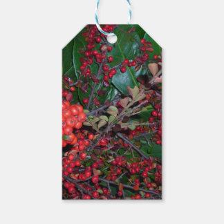 Rote Weihnachtsbeeren-Geschenk-Verpackung Geschenkanhänger