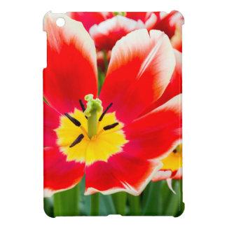 Rote weiße Tulpe auf dem Gebiet der Tulpen iPad Mini Hülle