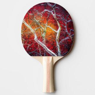 Rote Winternacht Tischtennis Schläger