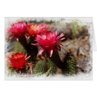 Rote Wüstenkaktus-Fackel-Blume Karte