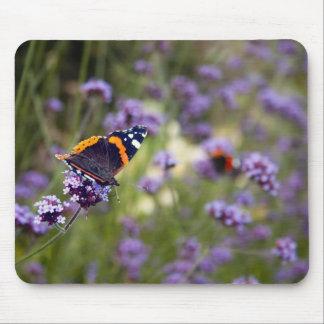 Roter Admirals-Schmetterling Mauspads