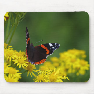 Roter Admirals-Schmetterling Mousepad