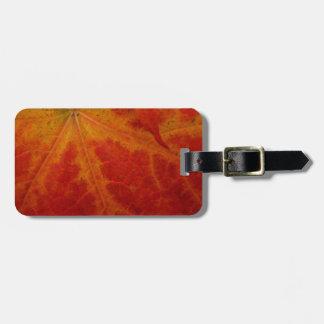 Roter Ahorn-Blatt-abstrakte Gepäckanhänger