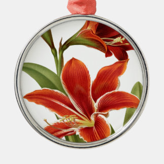 ROTER Amaryllis Silbernes Ornament