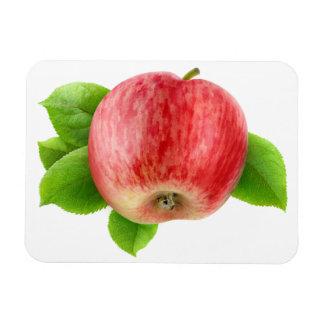 Roter Apfel Eckige Magnete