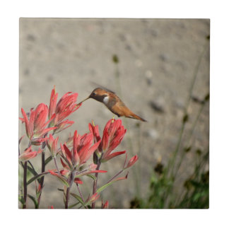 Roter Blumenvogel Fliese