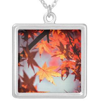 Roter Fall-Herbst verlässt Ahorn-Baum Versilberte Kette