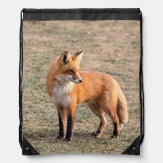 Roter Fox auf einem Gebiet Turnbeutel