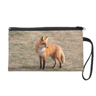 Roter Fox auf einem Gebiet Wristlet Handtasche