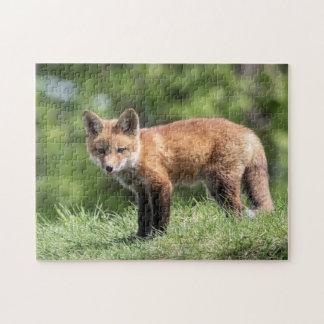 Roter Fox-Ausrüstung Puzzle