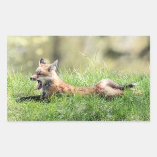 Roter Fox-Ausrüstung Rechteckiger Aufkleber