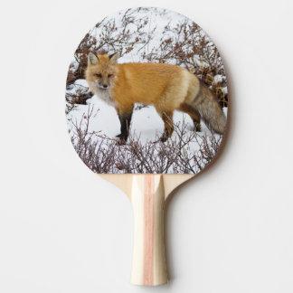 Roter Fox im Schnee im Winter Tischtennis Schläger