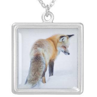 Roter Fox im Winter Versilberte Kette